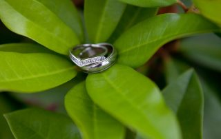 wedding rings in foliage
